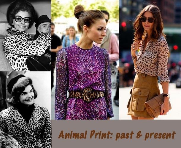 celebrity-animal-print1