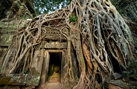 A real HumanStory: Η δύναμη της φύσης όταν ξεπερνά τον άνθρωπο και τον πολιτισμό (Εικόνες)