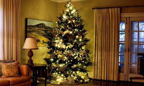 #Christmas: Special Tips για το τέλειο Χριστουγεννιάτικο δέντρο