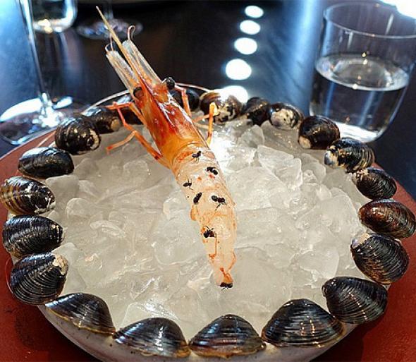 Σπεσιαλιτέ εστιατορίου παγκοσμίου φήμης με… ζωντανά μυρμήγκια (Εικόνες)